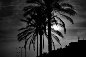 Spanien_2014_DSC_7957