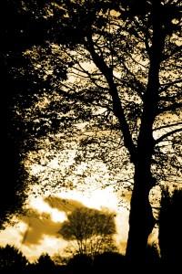 01_Sonnenuntergang
