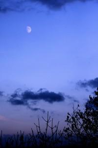 07_Mond