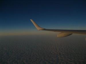 wing03